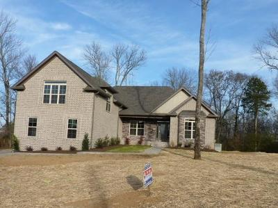 Mount Juliet Single Family Home For Sale: 1471 Mires Rd