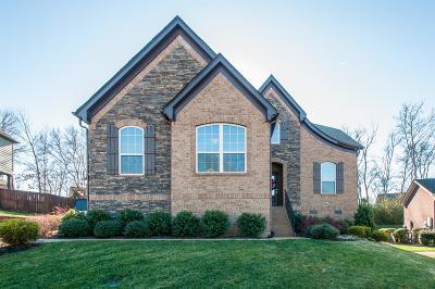 Hendersonville Single Family Home For Sale: 112 Fountain Brooke