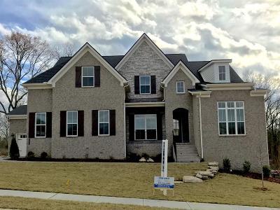 Nolensville Single Family Home For Sale: 291 Burberry Glen Blvd.
