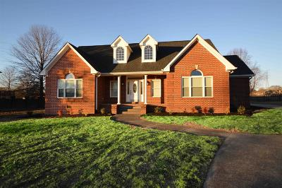 Sumner County Single Family Home For Sale: 1734 Stop Thirty Rd