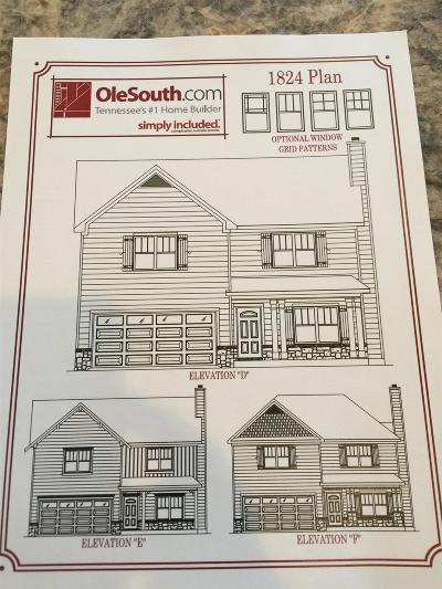 Smyrna Single Family Home For Sale: 109 Point Given Way(Lot#5)