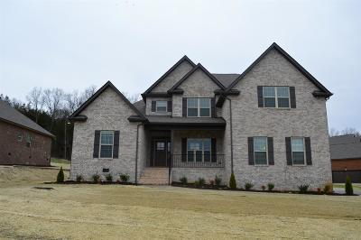 Single Family Home For Sale: 640 Twin View Dr