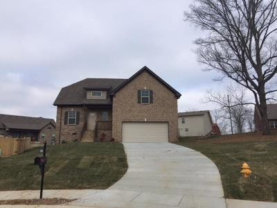Smyrna Single Family Home Under Contract - Showing: 5501 Reflection Rd