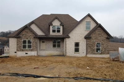 Nolensville Single Family Home For Sale: 159 Dobson Knob Trail (Lot 48)