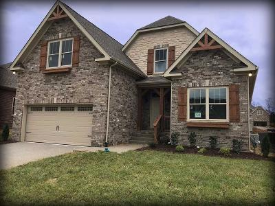 Spring Hill Single Family Home For Sale: 9022 Wheeler Dr. Lot 723