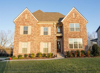 Spring Hill Single Family Home For Sale: 1074 Cantwell Pl
