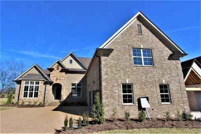 Mount Juliet Single Family Home For Sale: 3029 Nichols Vale Lane #105
