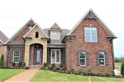 Mount Juliet Single Family Home For Sale: 3037 Nichols Vale Lane #318