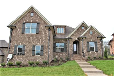 Mount Juliet Single Family Home For Sale: 3030 Nichols Vale Lane #301