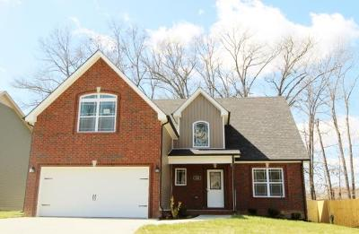 Clarksville Single Family Home For Sale: 40 Sycamore Hill