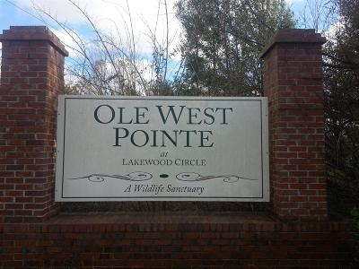Residential Lots & Land Active - Showing: 39 W Ole Pointe Road