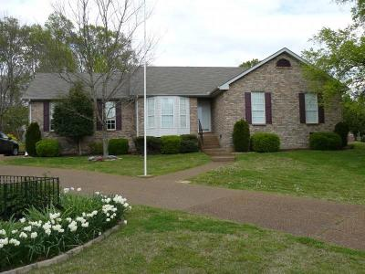 Hendersonville Single Family Home For Sale: 100 Candle Pl