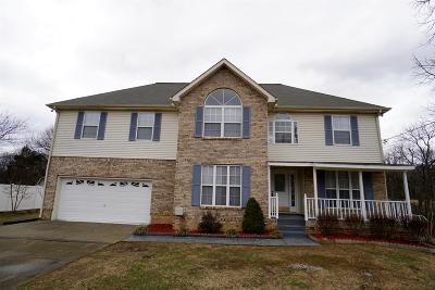 Smyrna Single Family Home For Sale: 408 Pointe Clear Dr