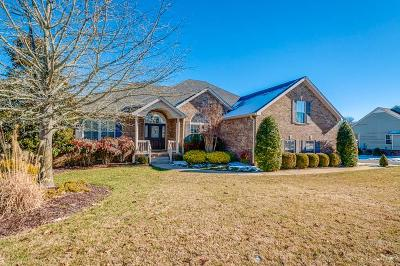 Spring Hill  Single Family Home For Sale: 1250 Chapmans Retreat Dr
