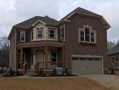 Spring Hill Single Family Home For Sale: 9055 Wheeler Dr - Lot 688