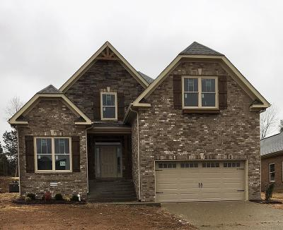 Spring Hill Single Family Home For Sale: 1017 Claymill Dr - Lot 708
