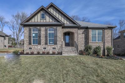 Nolensville Single Family Home For Sale: 5112 Falling Water Road