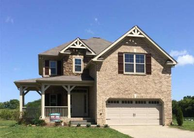 Spring Hill Single Family Home For Sale: 5014 Brickway Ct - Lot 743