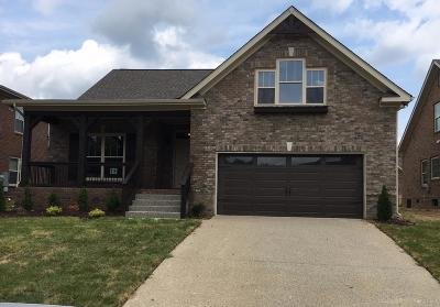 Spring Hill Single Family Home For Sale: 2010 Virgle Circle - Lot 694