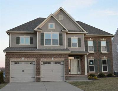 Spring Hill  Single Family Home For Sale: 5008 Brickway Ct. - Lot 766