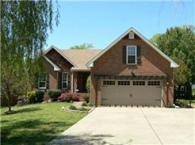 Hendersonville Single Family Home Under Contract - Showing: 110 Candle Wood Dr
