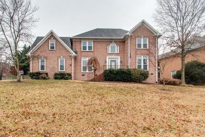 Hendersonville Single Family Home For Sale: 138 Ballentrae Dr