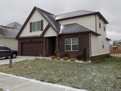 Smyrna Single Family Home For Sale: 4343 Freemark Dr