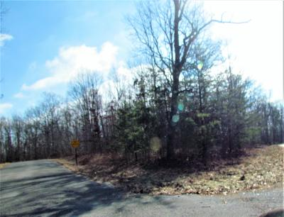 Sewanee Residential Lots & Land For Sale: Pine Dr