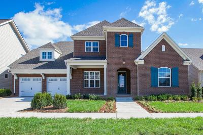 Hendersonville Single Family Home For Sale: 207 Ashington Circle, Lot 98