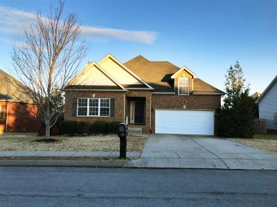 Spring Hill Single Family Home For Sale: 1242 Chapmans Retreat Dr