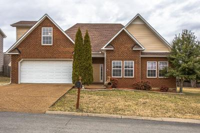 Spring Hill Single Family Home For Sale: 1014 Golf View Way