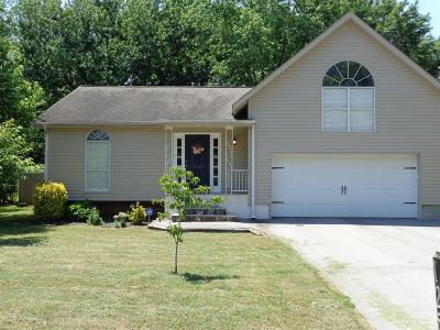 Franklin Single Family Home For Sale: 1258 Chickering Dr