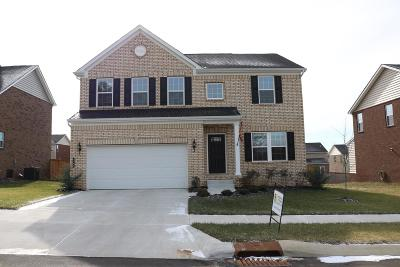Nolensville Single Family Home For Sale: 2709 Zumac Ct.
