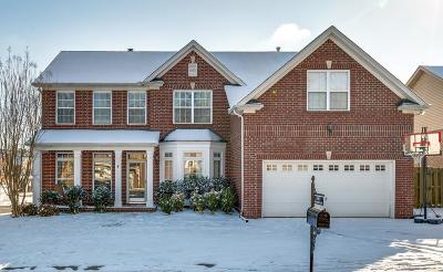 Spring Hill Single Family Home For Sale: 1007 Williford Ct