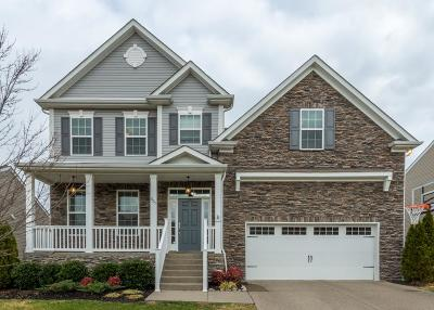 Nolensville Single Family Home For Sale: 1825 Looking Glass Ln