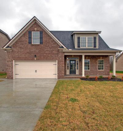 Murfreesboro Single Family Home For Sale: 534 Ruby Oaks Lane- Lot 4