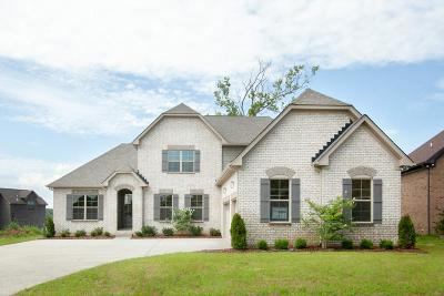 Hendersonville Single Family Home For Sale: 1071 Tower Hill Ln Lot 71