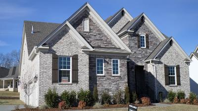 Williamson County Single Family Home For Sale: 4102 Old Light Circle #720