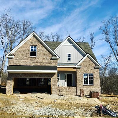 Hendersonville Single Family Home For Sale: 773 Villa Way