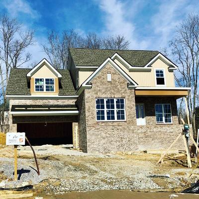 Hendersonville Single Family Home For Sale: 774 Villa Way
