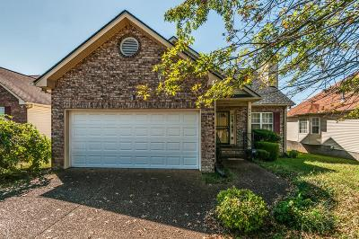 Davidson County Single Family Home For Sale: 3041 Chateau Valley Dr