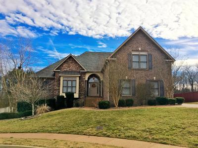 Davidson County Single Family Home For Sale: 2205 Seven Points Cir