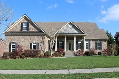 Spring Hill Single Family Home For Sale: 1206 White Rock Rd