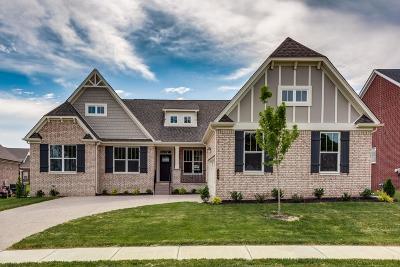 Nolensville Single Family Home For Sale: 731 Eldon Lane