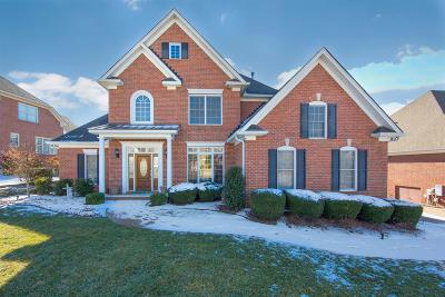 Goodlettsville Single Family Home For Sale: 1008 Calebs Walk