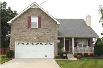 Clarksville Single Family Home For Sale: 1302 Sunfield Dr