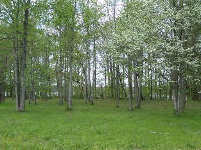 Residential Lots & Land For Sale: 8 Woods Lake Rd