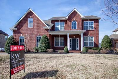 Hendersonville Single Family Home For Sale: 1014 Avery Trace Circle