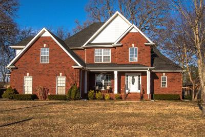 Smyrna Single Family Home For Sale: 323 Andy Johns Dr