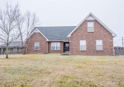 Smyrna, Lascassas Single Family Home Under Contract - Showing: 8005 Wicker Dr